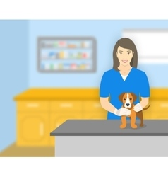 Woman veterinarian holding a dog in veterinary vector