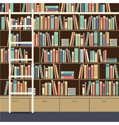 Bookcase With Ladder vector image