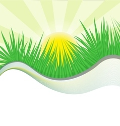 Grass wave vector
