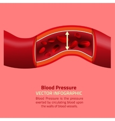 Blood pressure infographic vector