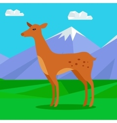 Fawn on lawn in mountains young deer vector