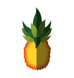 pineapple exotic fruit icon vector image