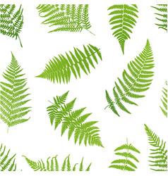 Fern seamless pattern vector