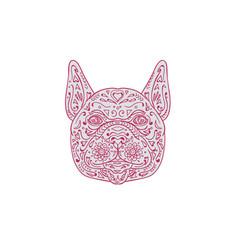 french bulldog head front mandala vector image vector image