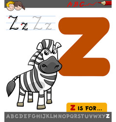 letter z with cartoon zebra vector image
