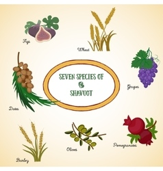 Seven species of the shavuot vector