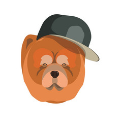 Chow chow dog with dark cap breed close up vector