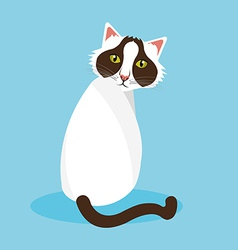 Cat design vector