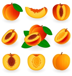 Icon set peach vector