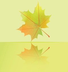 Autumn wet maple leaf falls to the puddle vector