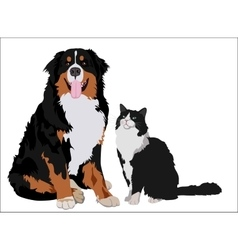 Dog and cat friends animals standing together vector