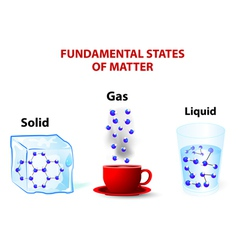 Fundamental states of matter vector