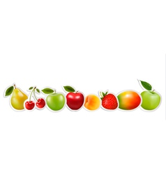 Set of healthy food fruit vector