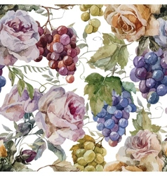 Pattern grapes roses vector
