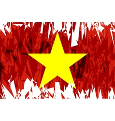 Flag of vietnam vector
