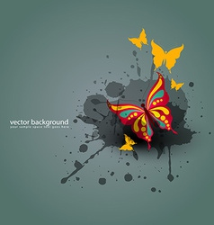 Butterfy background vector