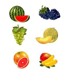 Fruits set vector