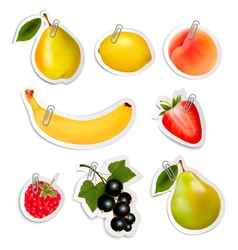 Set of flat fruit stickers with paper clips vector image