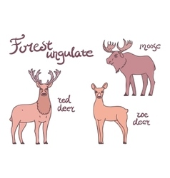 Forest ungulate animals set vector