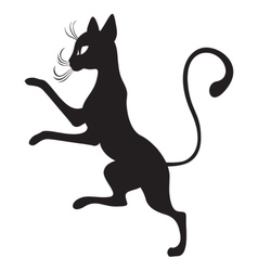 Black cats in the profile vector