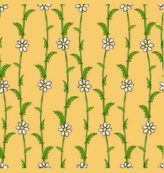 seamless pattern of white daisies on green stems vector image vector image