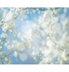 Blurred background flowering spring tree vector
