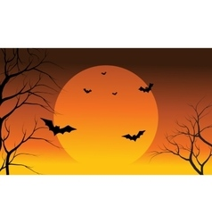 Bat and full sun at the afternoon halloween vector