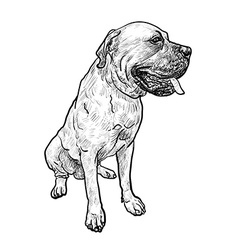 Drawing of mastiff dog on sitting pose vector