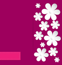 Camomile pink background vector