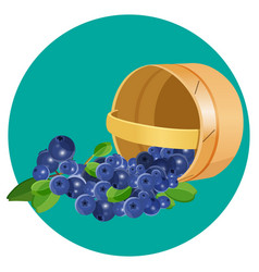 Wooden underlying basket with blueberries vector