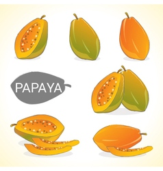 Set of papaya fruit in various styles vector