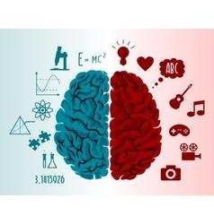 Brain infographics vector image