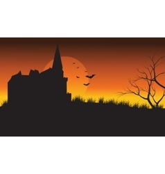 At afternoon castle and bat halloween scenery vector