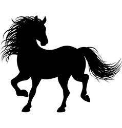 horse runs vector image vector image