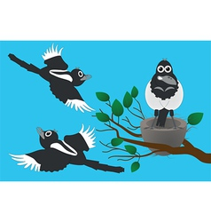 Magpies vector