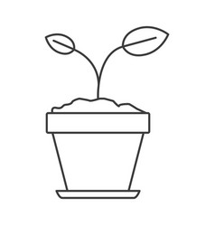 Monochrome silhouette of small plant in flower pot vector