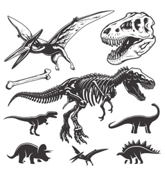 Set of dinosaurs elements vector