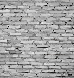 White grunge brick wall background vector
