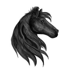 Black purebred horse stallion symbol vector