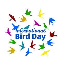 International bird day vector