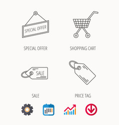Shopping cart price tag and sale coupon icons vector