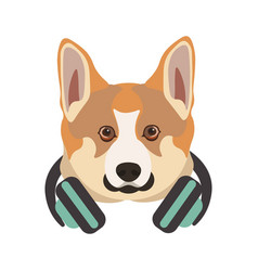 basenji breed dog portrait with headphones on neck vector image vector image