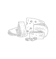 Cheese assortment plate hand drawn realistic vector