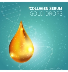 Collagen solution golden drop vector