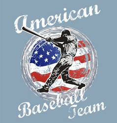 Baseball us flag vector