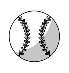baseball ball equipment - shadow vector image