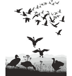 geese - winged migration vector image