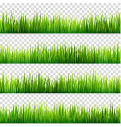 Grass isolated on transparent background set vector