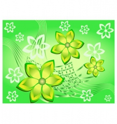 pattern with lines and flowers vector image