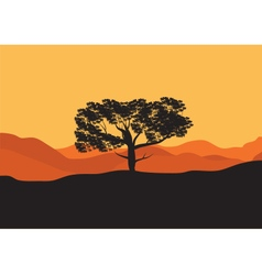 Silhouettes of trees in the desert vector